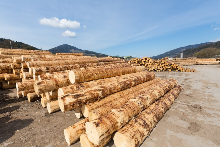 Evropska sredstva za drugi javni razpis za daljinsko ogrevanje na obnovljive vire