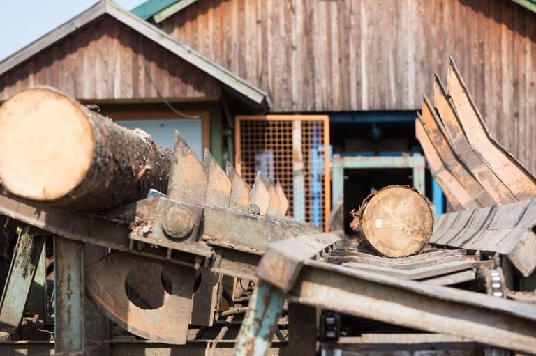 Evropska sredstva za razvoj lesarstva na področju polproizvodov