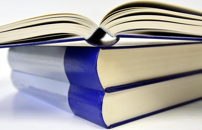 Objavljen je Javni razpis za sofinanciranje projektov v okviru programa Izobraževanje – krepitev človeških virov