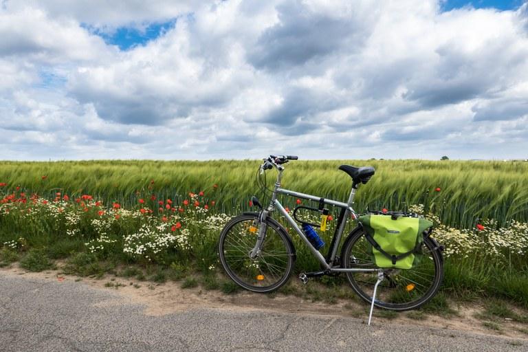 Spodbujamo trajnostno mobilnost: Evropska sredstva za kolesarsko stezo od Lendave do Črenšovcev